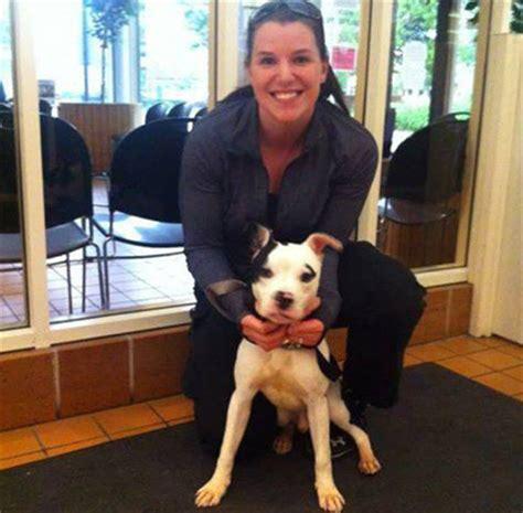 puppy adoption chicago city of chicago pet adoption
