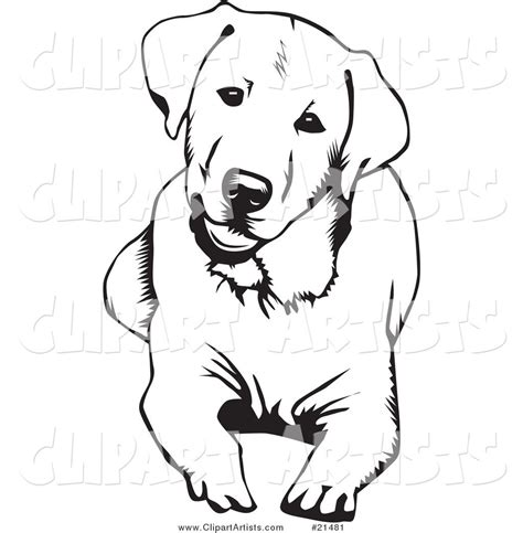 labrador coloring pages labrador coloring pages search cut files