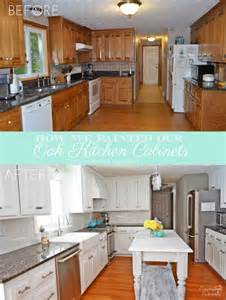 Painting Kitchen Cabinets White Diy by How We Painted Our Oak Cabinets And Minimized The Grain
