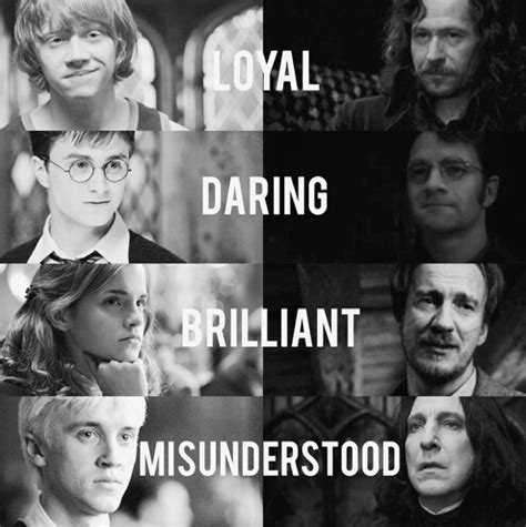 libro fviken draco malfoy harry potter hermione granger james potter remus lupin image 3944406 by