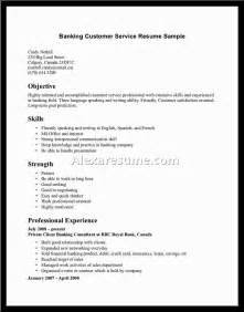 Customer Service Skills For Resume Exles by Sales Customer Service Experience Resume