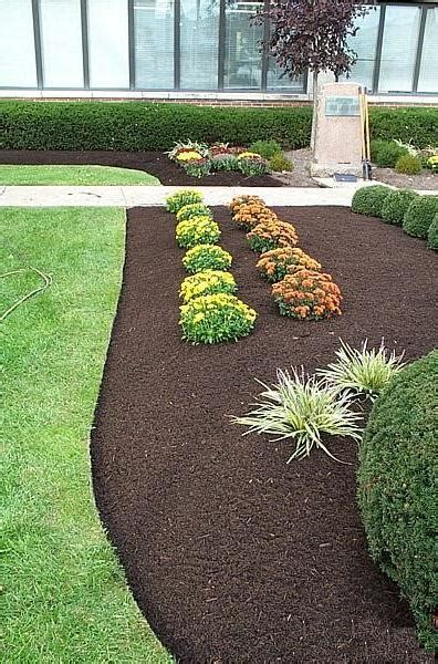 mulching tips and tricks more essential gardening ideas