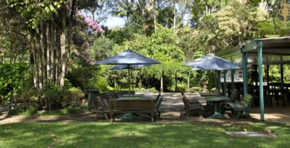 Cafes Near Botanic Gardens Discover 3 Secret Garden Cafes In Coffs Localsearch