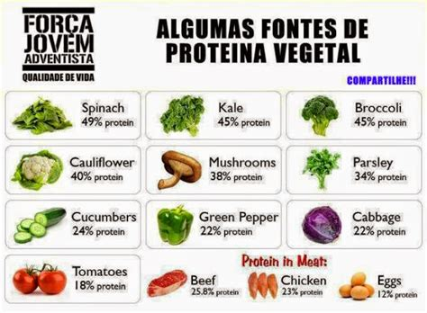 alimentos con mas prote nas lista de proteina vegetal lista de proteina vegetal