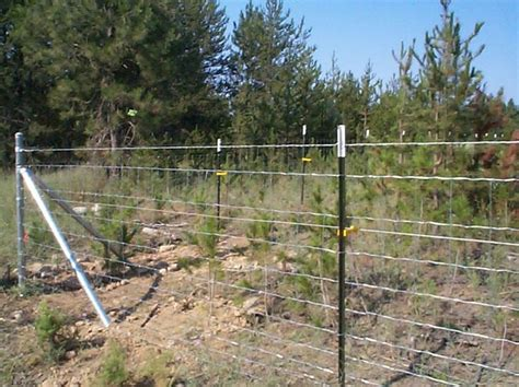 25 best ideas about field fence on wire fence