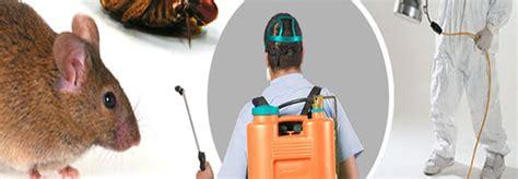 sadamjee services pest control karachi pest control