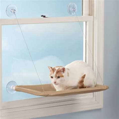 Pet Shelf pet window shelf window shelf cat window shelf walter