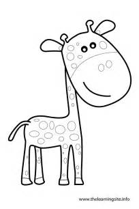Outlines Of Animals For Colouring by Free Coloring Pages Of Giraffe Outline