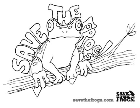 coloring book lyrics no problem teachers for frogs