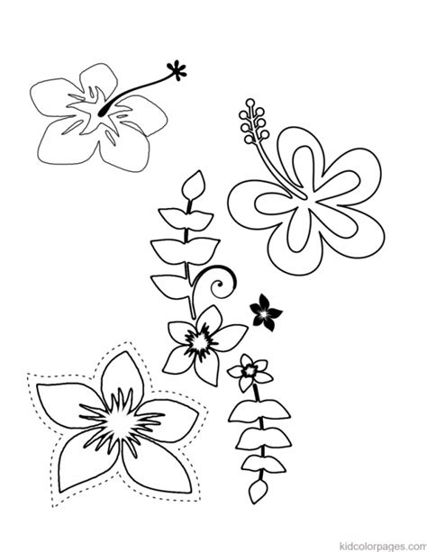 hawaiian lei coloring pages printable coloring pages