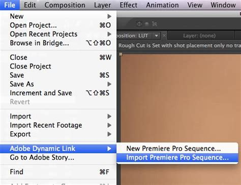 adobe premiere cs6 how to install how to install plugins premiere pro cs6 mac