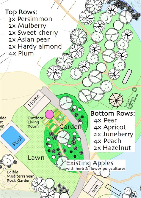 layout design of an orchard design install appleseed permaculture