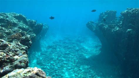 Ocean Floor Terra Incognita  Eldorado Krypton