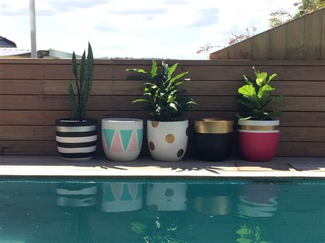indoor plant design design twins new pots are perfect for indoor plant trend