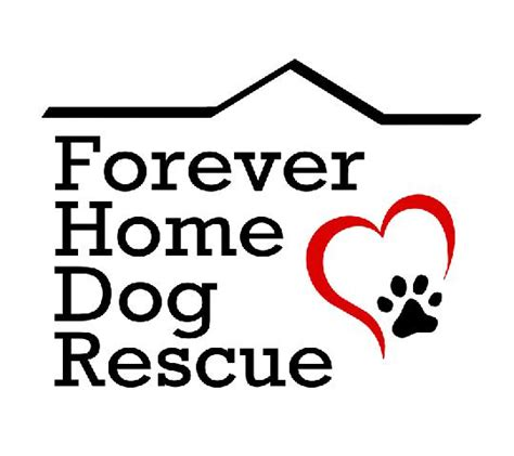 forever home rescue petfinder