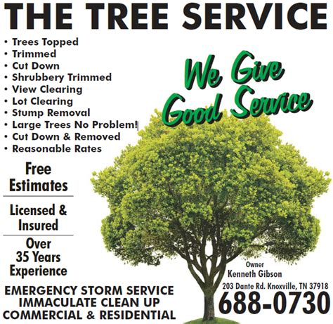 haircut coupons knoxville tn the tree service 203 dante rd knoxville tn 37918 yp com