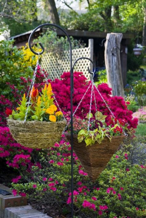 fascinating examples   arrange hanging flowers