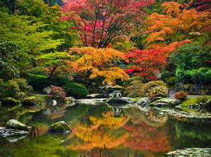 maple viewing festival at seattle japanese garden oct 15