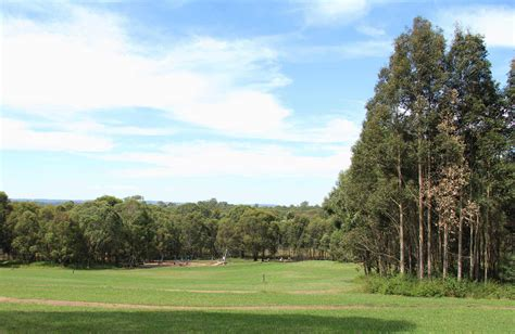 rouse hill regional park visitor info nsw national parks