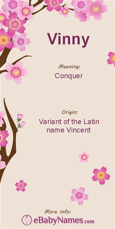 Jajan Vinny meaning of vinny conquer