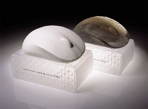 Creative Home Interior Design Ideas by All About Soap Design Swan