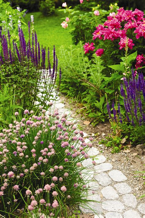 footpath flowers perennial garden ideas magazine photograph new england gar