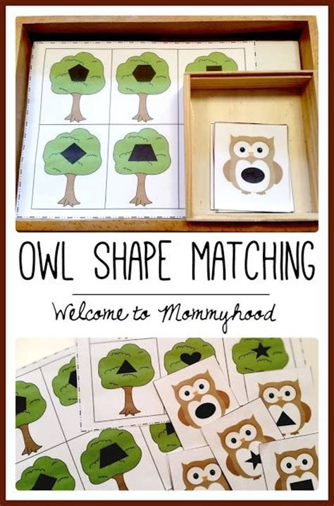 printable owl puzzle free owl shape matching printable from welcome to