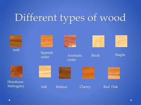 what different types of wood are needed for cabinets floors and roofs ppt wood powerpoint presentation id 1619837