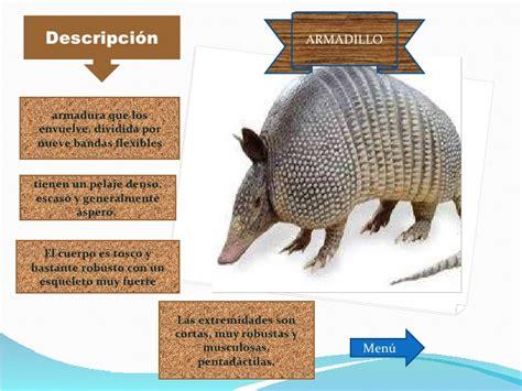 imagenes mitologicas con su descripcion animales en peligro de extincion