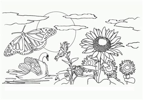 coloring book views 84 nature coloring pages coloring pages for adults