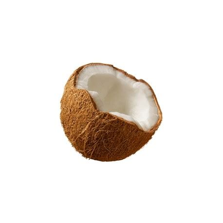 Tfa Coconut 30ml tfa coconut flavor los alquimistas net