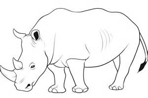 Wild Animal Coloring Pages AnimalColoringPages  sketch template
