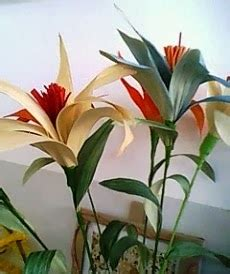 cara membuat zpt dari jagung cara membuat bunga dari kulit jagung kreativitas