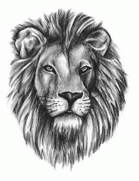 cartoon lion tattoo designs 29 best cartoon lion tattoos for girls images on pinterest