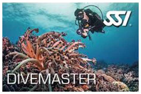 dive master divemaster divemaster