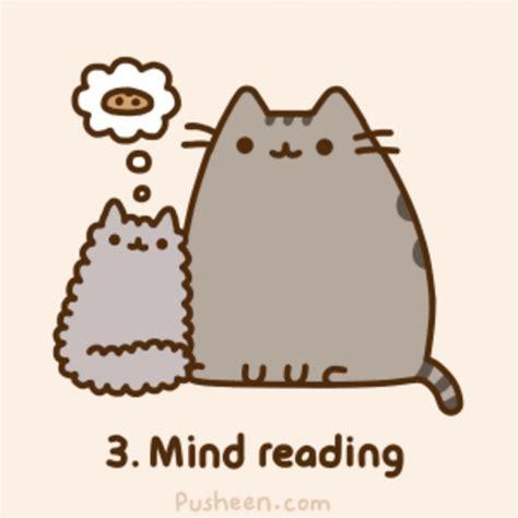 Pusheen The Cat Meme - pusheen cat memes