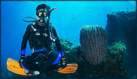 dive in scuba scuba diving bali certified diver sanur bali tours and