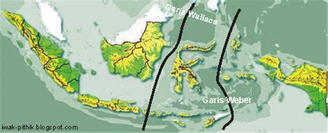 tutorial cara menggambar flora persebaran flora dan fauna di indonesia tutorial cara