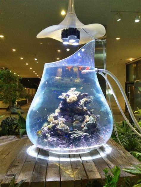 aquarium design application pinterest the world s catalog of ideas