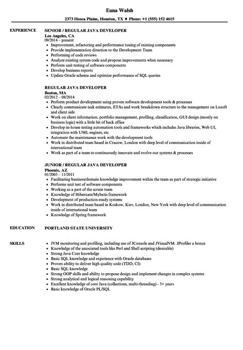 regular java developer resume sles velvet