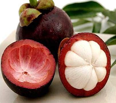 Obat Penyakit Kulit Sinusitis Cak Asam Urat obat sinusitis alami dengan bahan kulit manggis ipan herbal