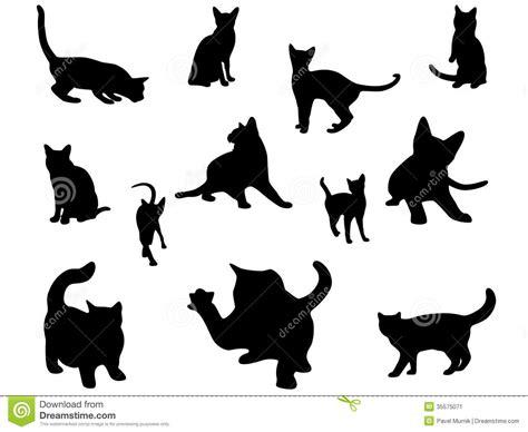 被设置的猫剪影