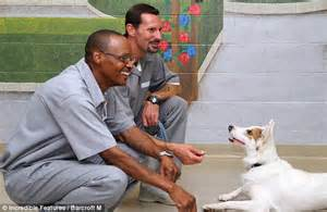 puppies for parole puppies for parole how rescue dogs are helping convicts rehabilitate and win chance