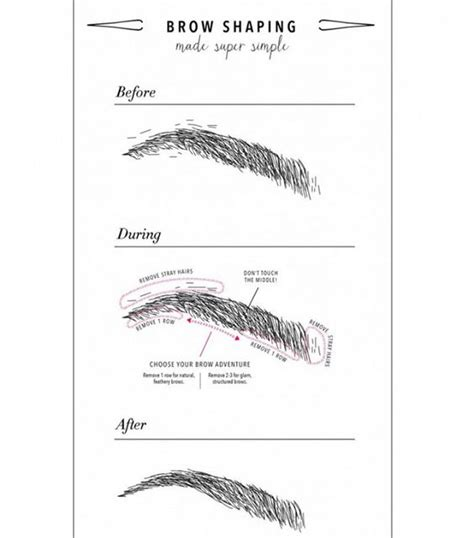 a visual guide to eyebrow shapes eyebrows brows and eyebrow tips on pinterest