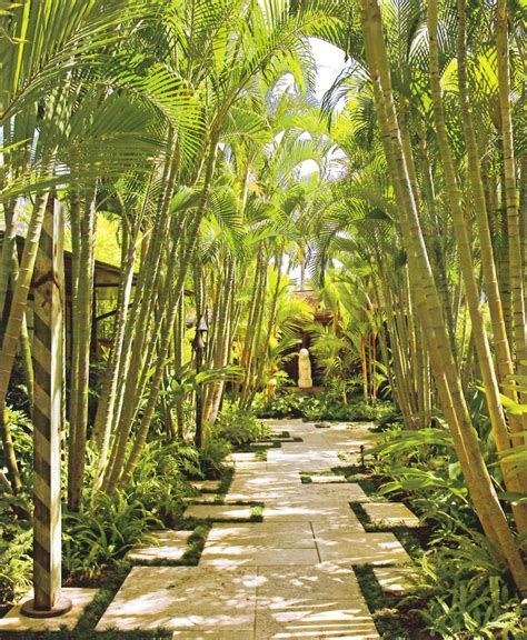 Backyard Bamboo Garden by Backyard Bamboo Landscape Tropical With Hawaiian Lights