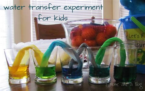 science experiments 2 and a paper towel water transfer science