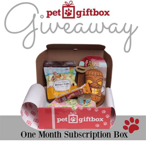 Pet Giveaway - the mommy island at your door pet gift box giveaway