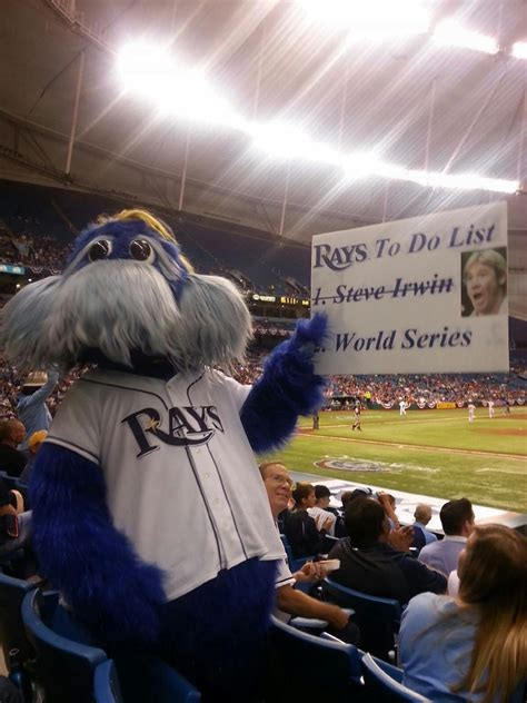 tampa bay rays fan  created steve irwin sign defends funny poster  york daily news