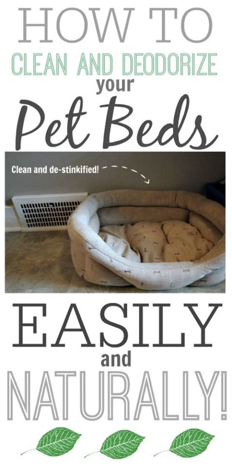 how to clean dog bed how to clean pet beds naturally beds cleaning and pet beds