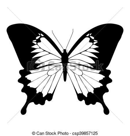 imagenes blanco y negro de mariposas mariposas negro blanco ilustraci 243 n vectorial buscar
